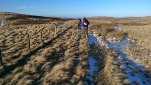 Out on the cheviots